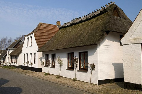 Thatched houses in Maasholm, Schleswig-Holstein, Germany, Europe