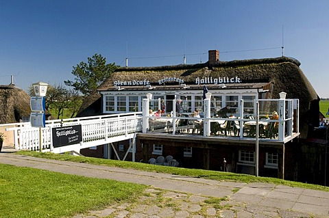 Restaurant and beachside coffeehouse Halligblick, Norderhafen harbor, Nordstrand island, Schleswig-Holstein, Germany, Europe