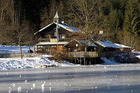 Restaurant Trifter Klause, Schwellhaeusl, Nationalpark Bavarian Forest, Bavaria, Germany, Europe