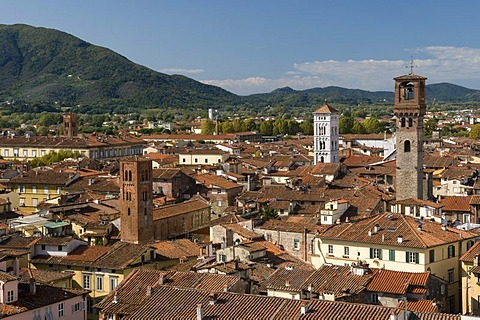 View from the Torre Guinigi look-out on the city, Lucca, Tuscany, Italy, Europe