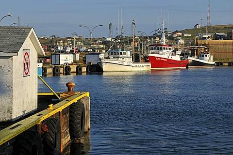 Fishing boat in the harbour of Ile du Cap aux Meules, Iles de la Madeleine, Magdalen Islands, Quebec Maritime, Canada, North America