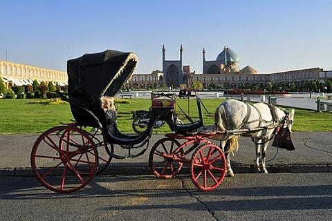 Horse drawn carriage on Meidan-e Emam, Naqsh-e Jahan, Imam Square with Sheik Lotfollah, Lotf Allah Mosque, UNESCO World Heritage Site, Isfahan, Esfahan, Iran, Persia, Asia