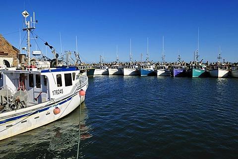 Fishingboats in the harbour of L'Etang du Nord, Ile du Cap aux Meules, Iles de la Madeleine, Magdalen Islands, Quebec Maritime, Canada, North America