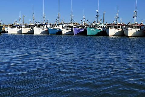 Fishingboat in the harbour of L'Etang du Nord, Ile du Cap aux Meules, Iles de la Madeleine, Magdalen Islands, Quebec Maritime, Canada, North America