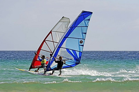 Windsurfers on the Playa de Sotavento de Jandia beach, Fuerteventura, Canary Islands, Spain, Europe