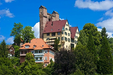 Burg Berneck castle with Hoher Mantel shield wall, Berneck, Black Forest, Baden-Wuerttemberg, Germany, Europe