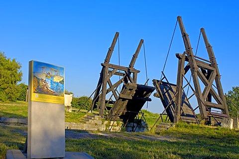 Langlois Bridge, Van Gogh Bridge, Arles, Bouches du Rhone, Provence, France, Europe