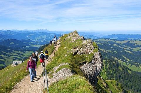Hikers, Mt. Hochgrat in Oberstaufen, Allgaeu, Bavaria, Germany, Europe