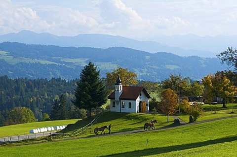 St. Hubertus Kapelle chapel in Forst near Scheidegg, Allgaeu, Bavaria, Germany, Europe