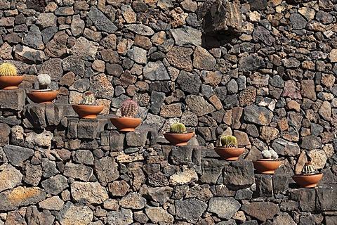 Stairs with potted cacti, cactus garden, Jardin de cactus, designed by Cesar Manrique, Guatiza, Lanzarote, Canary Islands, Spain, Europe
