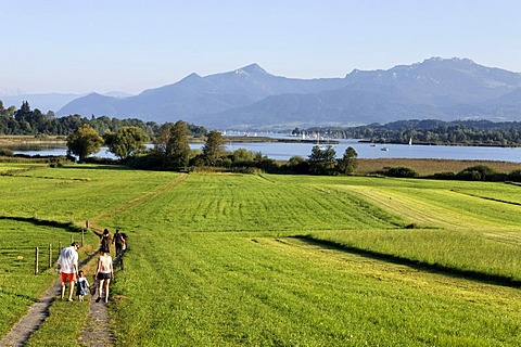 Family walking on pathway, Schafwaschen, Chiemsee, Chiemgau, Upper Bavaria, Germany, Europe