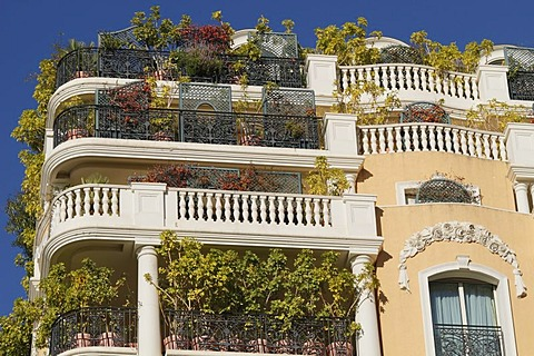 Planted balconies of an apartment house on the Boulevard d'Italie, Monaco, Cote d'Azur, Europe