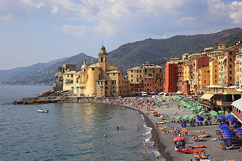 Camogli in the Genoa province, on the Golfo Paradiso at the Riviera di Levante, beach promenade and church of Santa Maria Assunta, Liguria, Italy, Europe