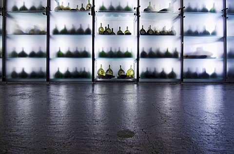 Modern wine shelf at the Hofkeller vinery in the Residenz palace in Wuerzburg, Bavaria, Germany