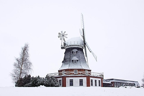 "Snow covered windmill and restaurant ""Kluetzer Muehle"" in winter, smock mill with wind rose, Kluetz, Kluetzer Winkel, Mecklenburg-Western Pomerania, Germany, Europe"