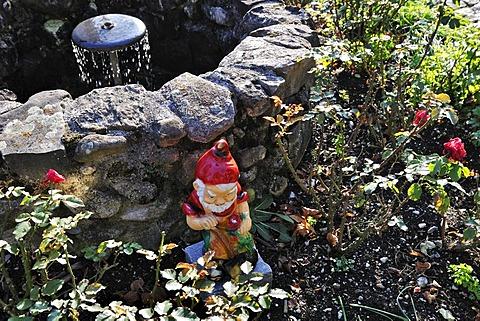 Gnome in the garden of the Kloster Benediktbeuern monastery, Bavaria, Germany, Europe