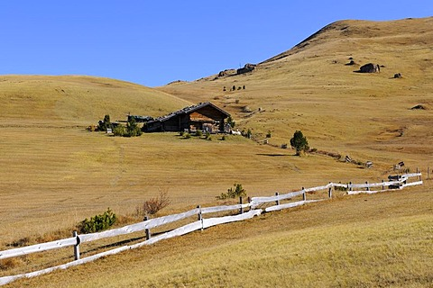 Cabin on the Seiser Alm mountain pasture, Dolomites, South Tyrol, Italy, Europe