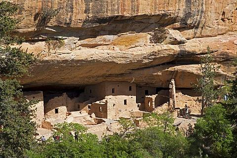 Cliff dwellings, Spruce Tree House, Anasazi Native American ruins, Mesa Verde National Park, Colorado, America, United States