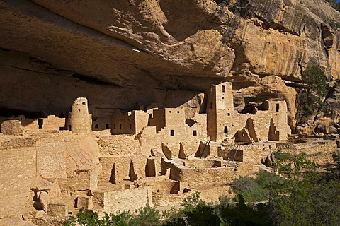 Cliff Palace, cliff dwellings, Anasazi Native American ruins, Mesa Verde National Park, Colorado, America, United States