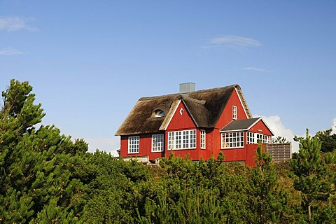 Classic, thatched house at Vejer beach, Jutland, Denmark, Europe