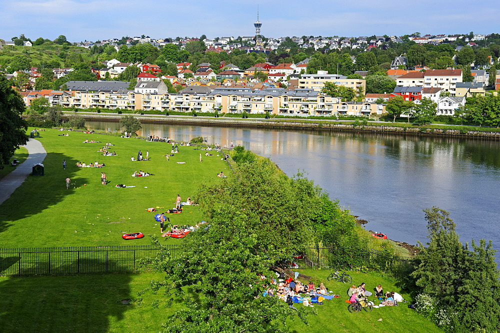 Nidelva, Trondheim, Norway, Scandinavia, Europe