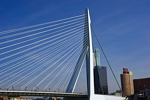 Erasmus Bridge, Rotterdam, South Holland, Holland, Netherlands, Europe