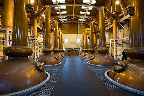 Glenmorangie, stills, Whiskey Distillery, Tain, Scotland, United Kingdom, Europe