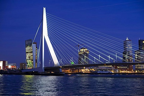 Erasmusbrug bridge and Kop van Zuid district on the Maas River, Rotterdam, South Holland, Holland, Netherlands, Europe