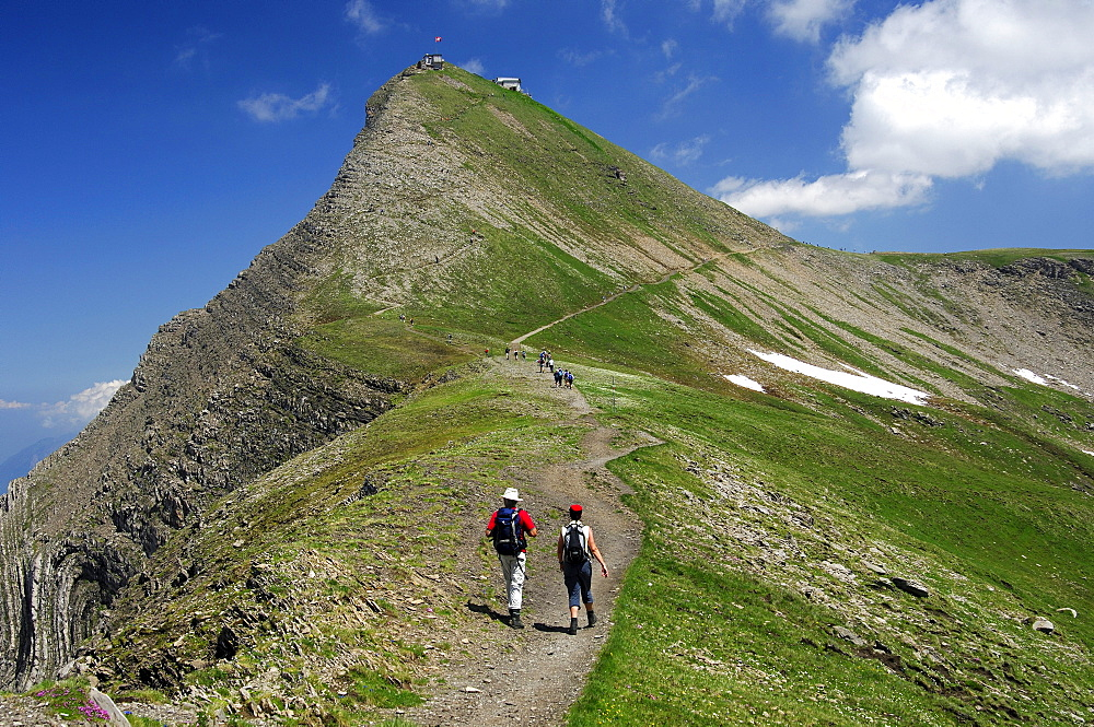 Hikers on the way to the Faulhorn summit, Bernese Oberland, Switzerland, Europe