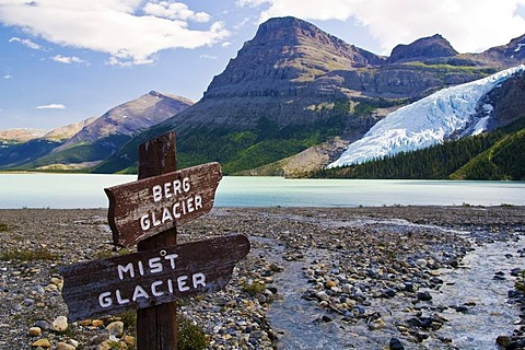 View of the Berg Lake and Berg glacier, Rocky Mountains, Mount Robson National Park, British Columbia, Canada