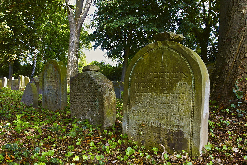Gravestones in the Jewish cemetery in Bonn Schwarz-Rheindorf, North Rhine-Westphalia, Germany, Europe