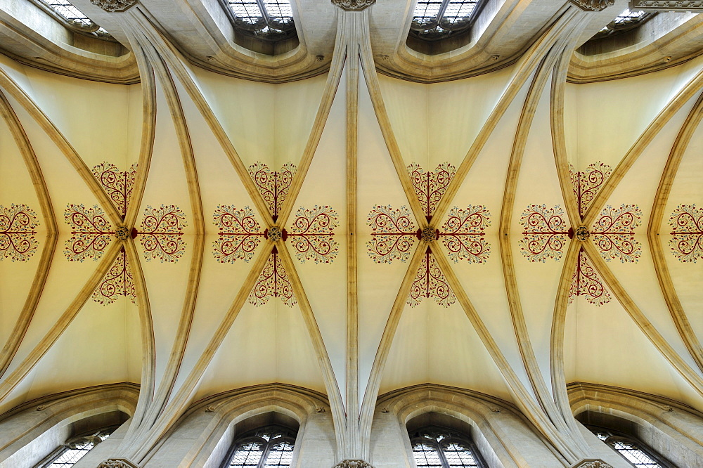 Ribbed vault in St. Andrew's Cathedral, Wells, County Somerset, England, United Kingdom, Europe