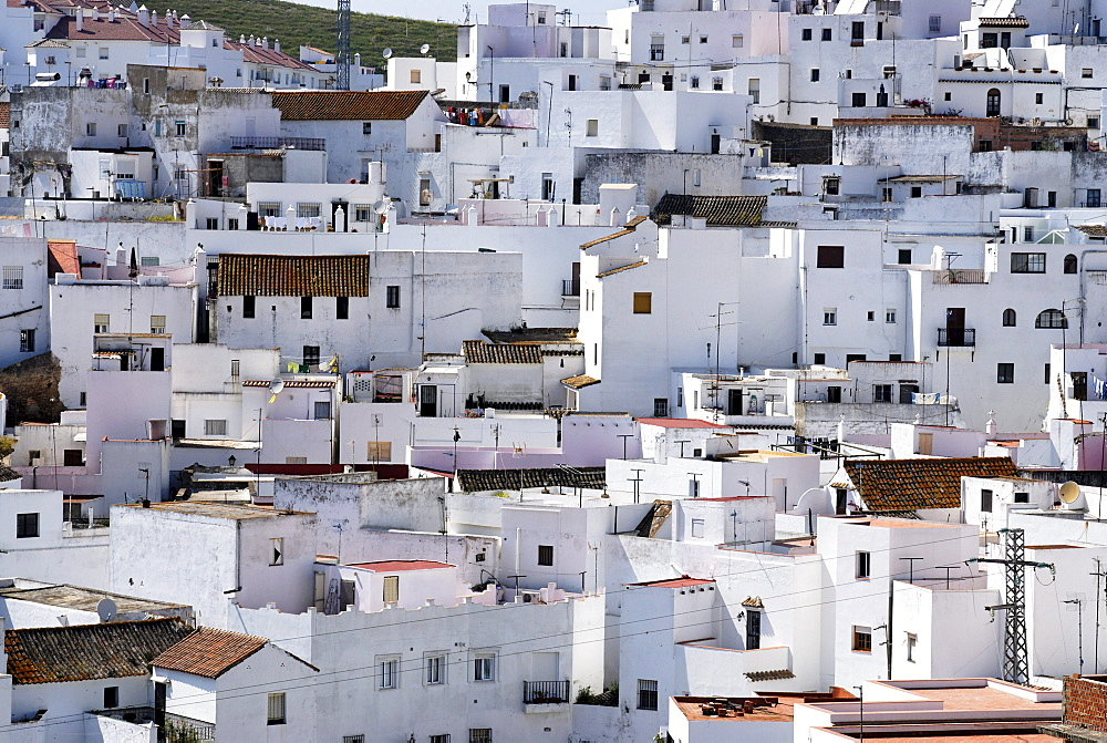 White painted houses of the historic town, Vejer de la Frontera, Andalusia, Spain, Europe