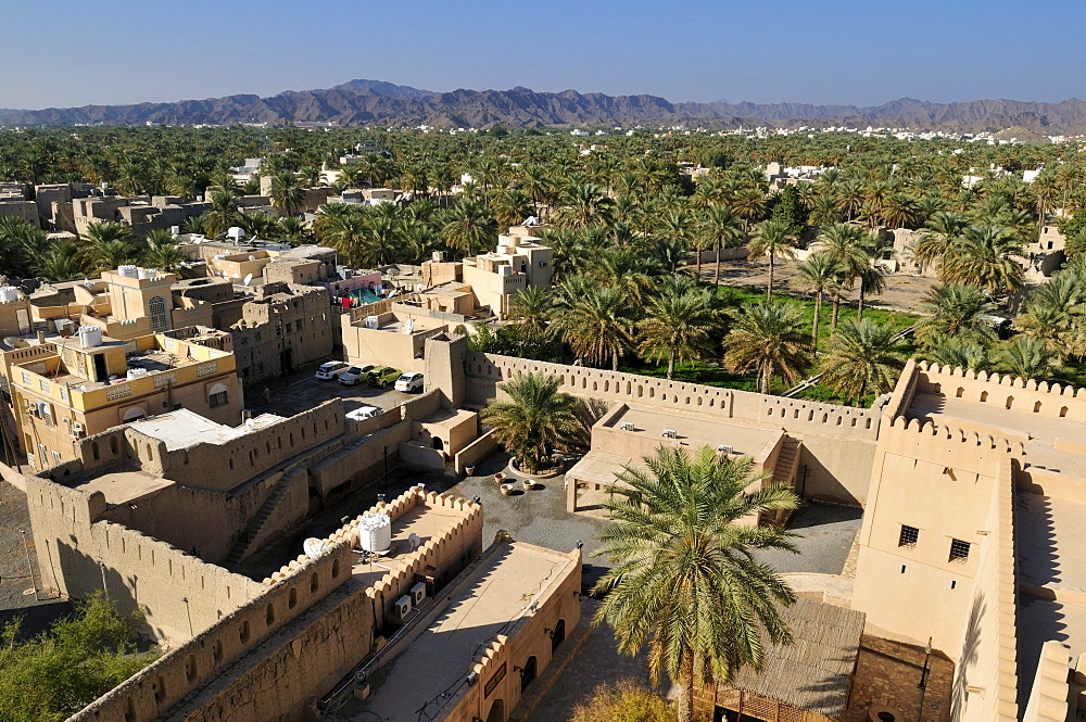 View from Nizwa fort or castle over the oasis, Hajar al Gharbi Mountains, Dhakiliya Region, Sultanate of Oman, Arabia, Middle East