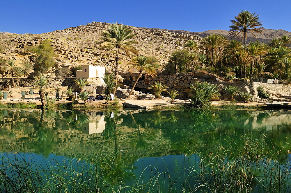 Water pool in a rocky canyon, Wadi Bani Khalid, Sharqiya Region, Sultanate of Oman, Arabia, Middle East