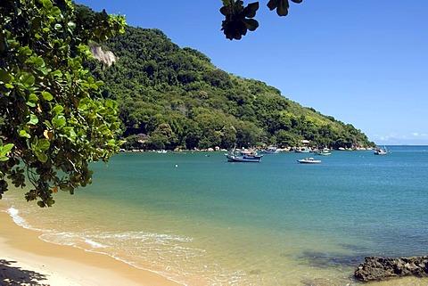 Picinguaba beach, Ubatuba, Atlantic ocean, Sao Paulo state, Brazil