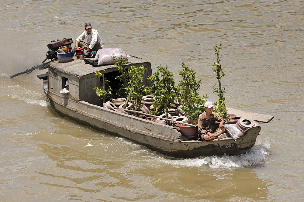 Two men on a wooden boat on Mekong River, plant trader, Can Tho, Mekong Delta, Vietnam