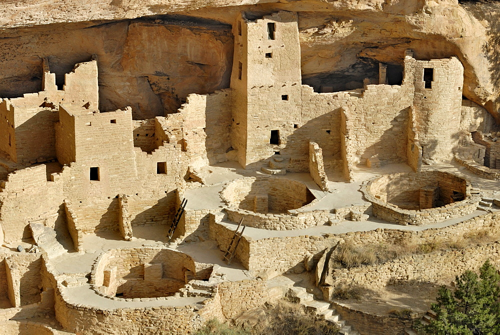 Historic habitation and cult site of the Ancestral Puebloans, Cliff Palace, partial view with 3 round ceremonial rooms, so-called called Kivas, about 1200 AD, Mesa Verde National Park, Colorado, USA