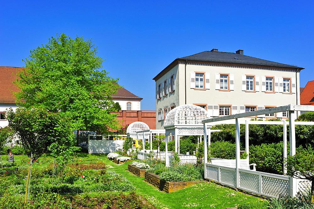 Rose garden, Ettlingen, Black Forest, Baden-Wuerttemberg, Germany, Europe
