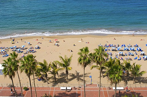 La Canteras beach in Las Palmas, Grand Canary, Canary Islands, Spain