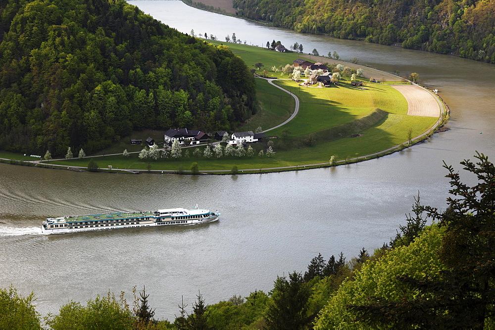 Passenger ship on Danube River, Schloegener loop, Schloegen, Upper Austria, Austria, Europe