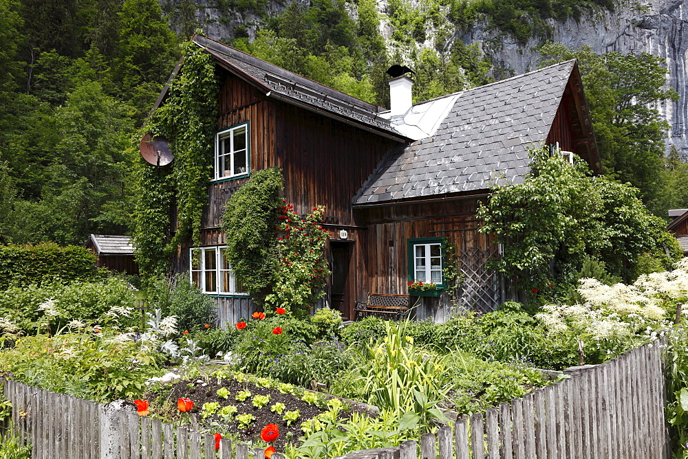 Traditional wooden house in Goessl on Lake Grundlsee, Ausseer Land, Salzkammergut area, Styria, Austria, Europe