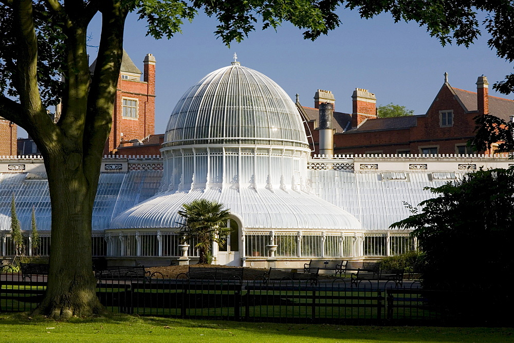 Palm house in the botanic garden of Belfast, County Antrim, Ulster, Northern Ireland, United Kingdom, Europe