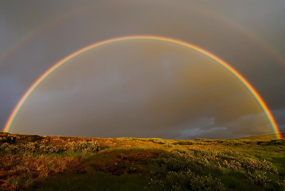 Rainbow over mountainous landscape, near Trondsbur, Hardangervidda, Europe's biggest high plain, Norway, Europe