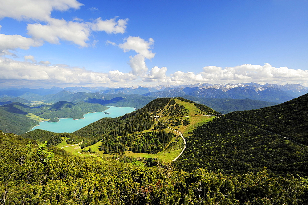 View from Mt. Herzogstand to the Herzogstand mountain station, in the back the Walchensee lake, district of Bad Toelz-Wolfratshausen, Bavaria, Germany, Europe