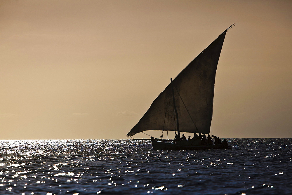 Arabian Dhow on the coast of Zanzibar, Tanzania, Africa