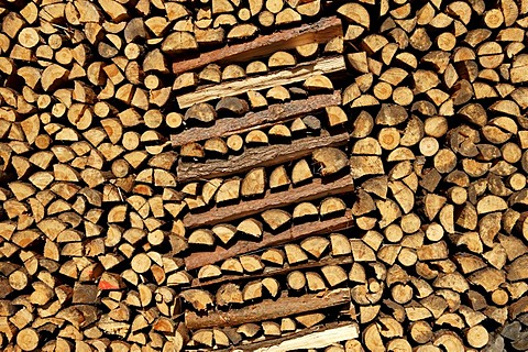 Piled up fire wood, Buch, Nuremberg, Franconia, Bavaria, Germany,