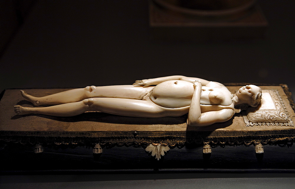 Anatomy doll from ivory, 1700, Schloss Huennefeld palace, Bad Essen, Lower Saxony, Germany, Europe