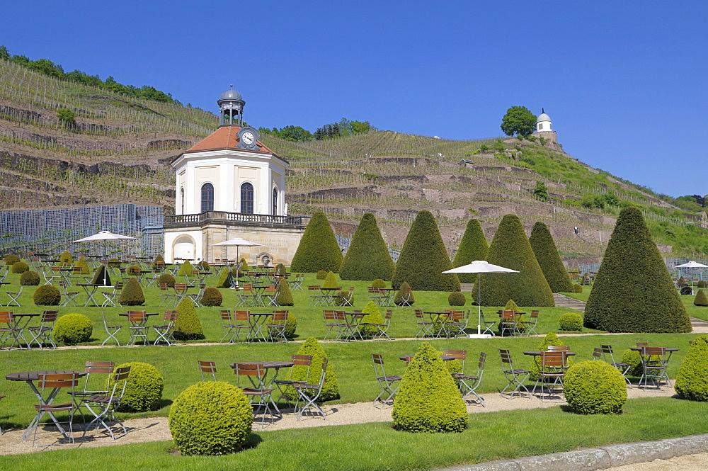 Belvedere, Schloss Wackerbarth Winery, Radebeul, Saxony, Germany, Europe