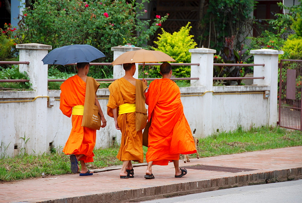 Monks in Luang Prabang, Laos, Southeast Asia